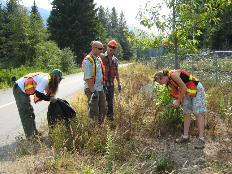Fund helping to wipe out invasive species