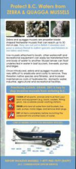 Aquatics_Rack_Card_image-e1476220805694
