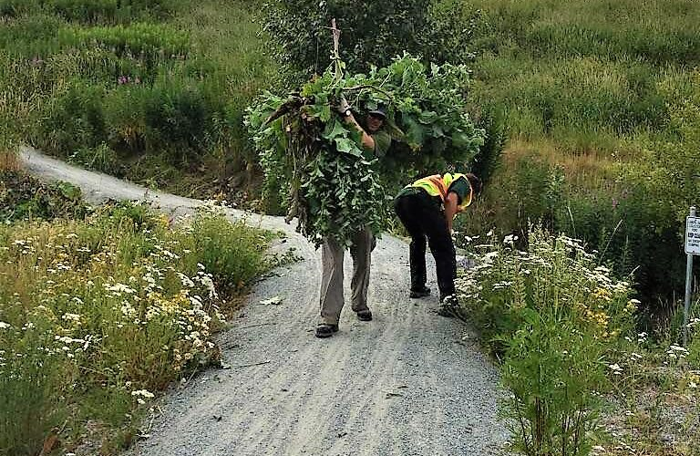 RMOW crews pulling out Burdock post training (edited)