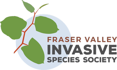 fviss-logo