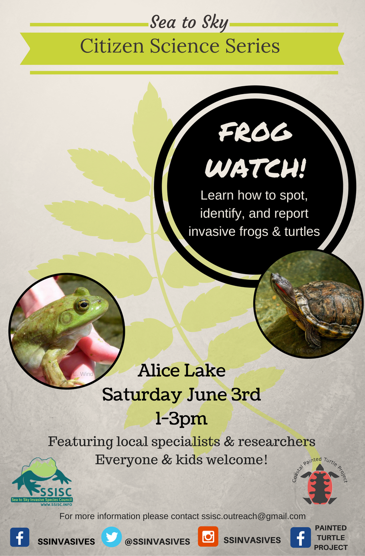 Join us for Frog Watch!
