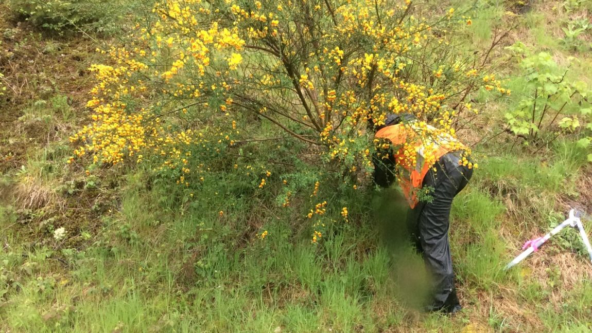 Provincial Support in the Fight Against Invasive Species