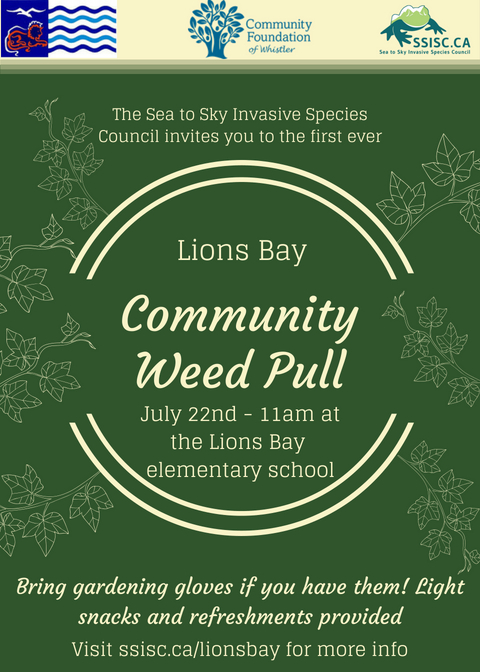 Lions Bay Community Weed Pull