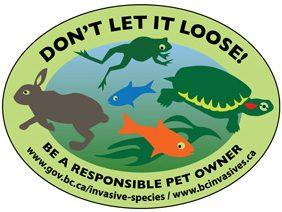 Dont-let-it-loose-logo-web-e1626114392707