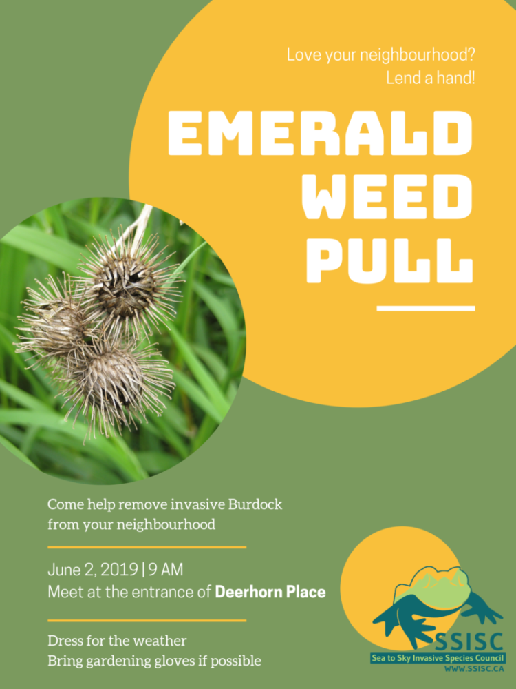 Upcoming Event: Community Weed Pull in Emerald Estates, Whistler!