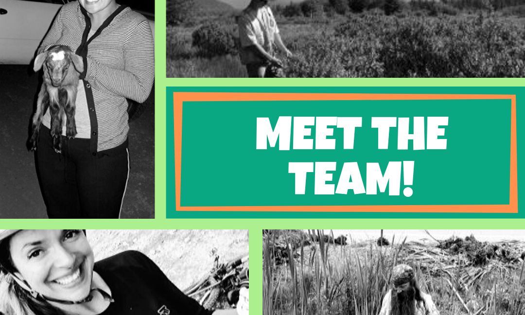 Dreamteam Thursday: Meet the Crew, August 2019 Edition